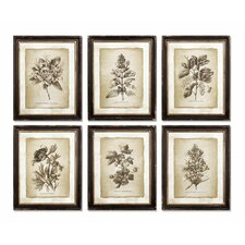 Vintage Floral 6 Piece Framed Graphic Art Set