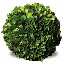 Preserved Greens Ball Wreath (Set of 4)