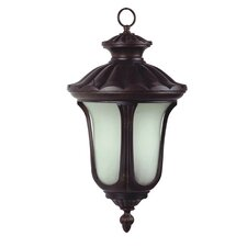 Tori 2 Light Outdoor Hanging Lantern