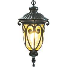 Viviana 1 Light Outdoor Hanging Lantern