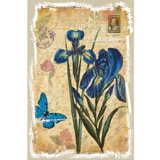 Revealed Artwork Iris Graphic Art on Wrapped Canvas