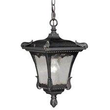 Castile 1 Light Outdoor Hanging Lantern