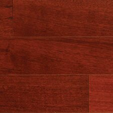 "Gevaldo 5"" Engineered Brazilian Cherry Hardwood Flooring in Natural"