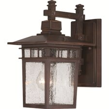 Cove Neck 1 Light Wall Lantern