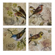 Kincaid Bird Photographic Print Plaque (Set of 4)