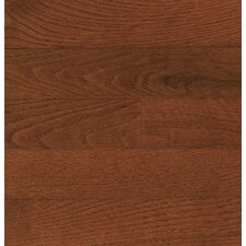 "Color Plank 5"" Engineered Red Oak Hardwood Flooring in Mocha"