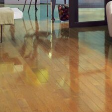 "Color Strip 2-1/4"" Solid Red Oak Hardwood Flooring in Natural High Gloss"