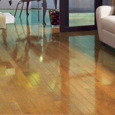 "Color Strip 3-1/4"" Solid White Oak Hardwood Flooring in Natural High Gloss"