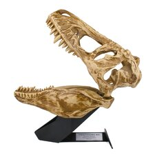 T-Rex In My Room 3D Wall Décor