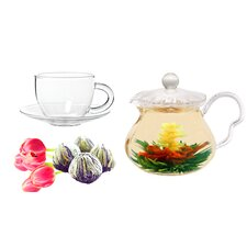Fairy 0.63-qt. Jasmine Fab Flowering Teapot Set