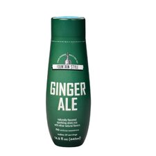 Ginger Ale Sparkling Drink Mix (Set of 4)