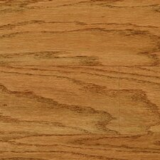 "Livingston 3"" Engineered Red Oak Hardwood Flooring in Honey"