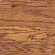 "Thornton 3-1/4"" Solid Oak Hardwood Flooring in Cider"