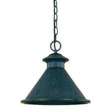 Dark Sky Essen 1 Light Outdoor Hanging Lantern