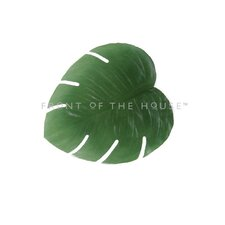 Philodendron Placemat (Set of 4)
