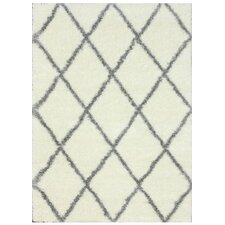 Gray & Off White Shag Area Rug