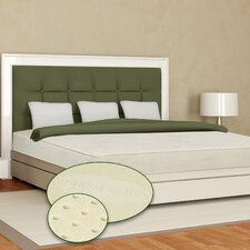 "Eclipse 8"" Latex Mattress"
