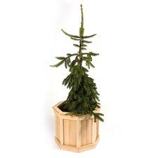 Novelty Planter Box