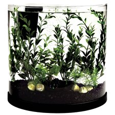 3 Gallon Bubbling Half Moon Aquarium Kit