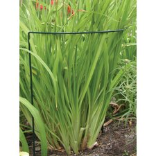 Prop-Ups Plant Support (Set of 24)