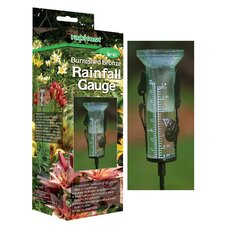Rainfall Gauge (Set of 6)