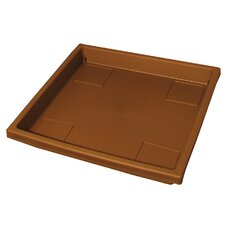 Square Tray (Set of 12)