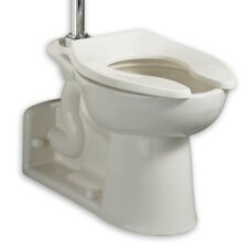 Priolo 1.28 GPF Elongated Universal Toilet Bowl with Top Spud Bedpan Slots