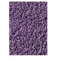 Soft Solids KIDply Lilac Area Rug