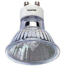 50W 120-Volt Halogen Light Bulb (Set of 4)