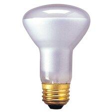 120-Volt Incandescent Light Bulb (Set of 9)