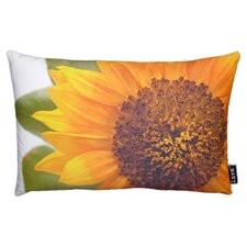Helianthus Throw Pillow