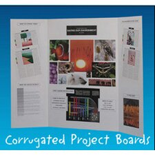 Project Boards White Carton Of 8