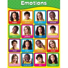 Emotions Laminated Chart (Set of 2)