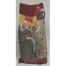 Lyric Fruit And Nut Bird Food