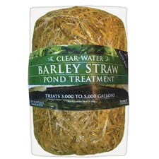 Clear-Water Barley Straw Bale
