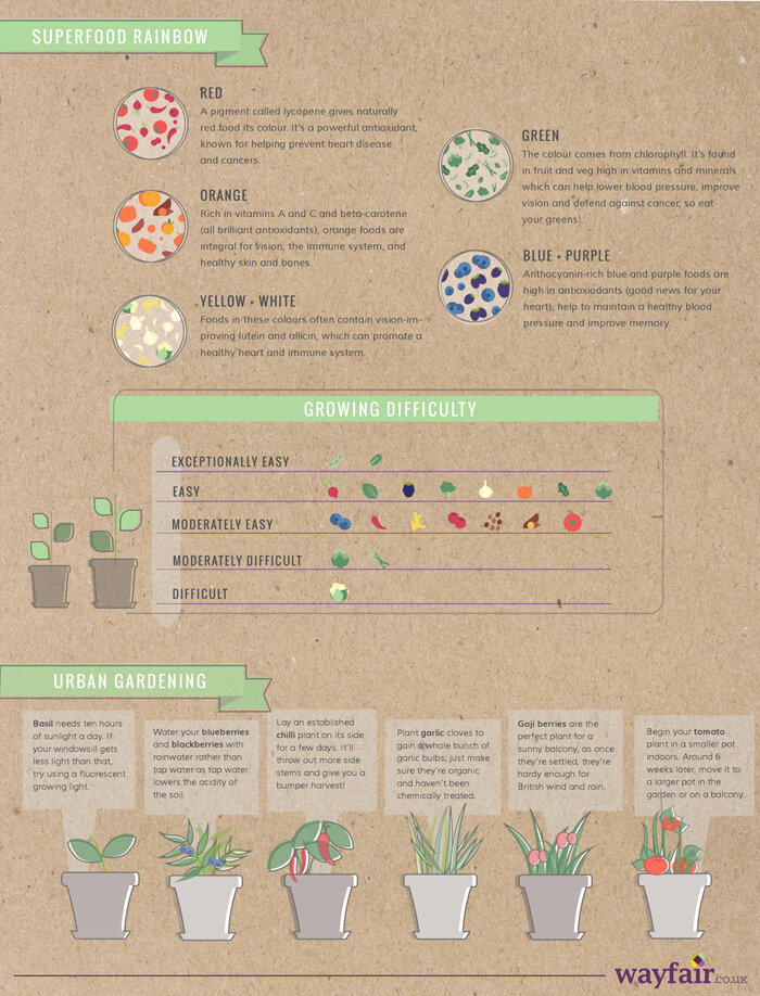 Grow Your Own Superfoods