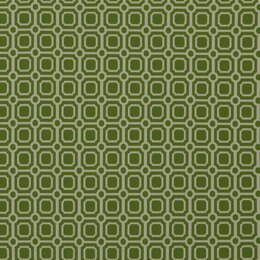 Palm Canyon Fabric - Lime