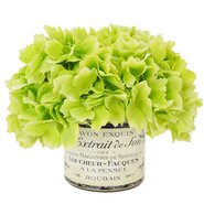 Green Hydrangea Bouquet in a French Label Pot