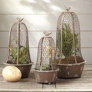 Perch Wire Cloches (Set of 3)