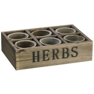 Tea Garden 6 Piece Herb Mini Planter Pot Set