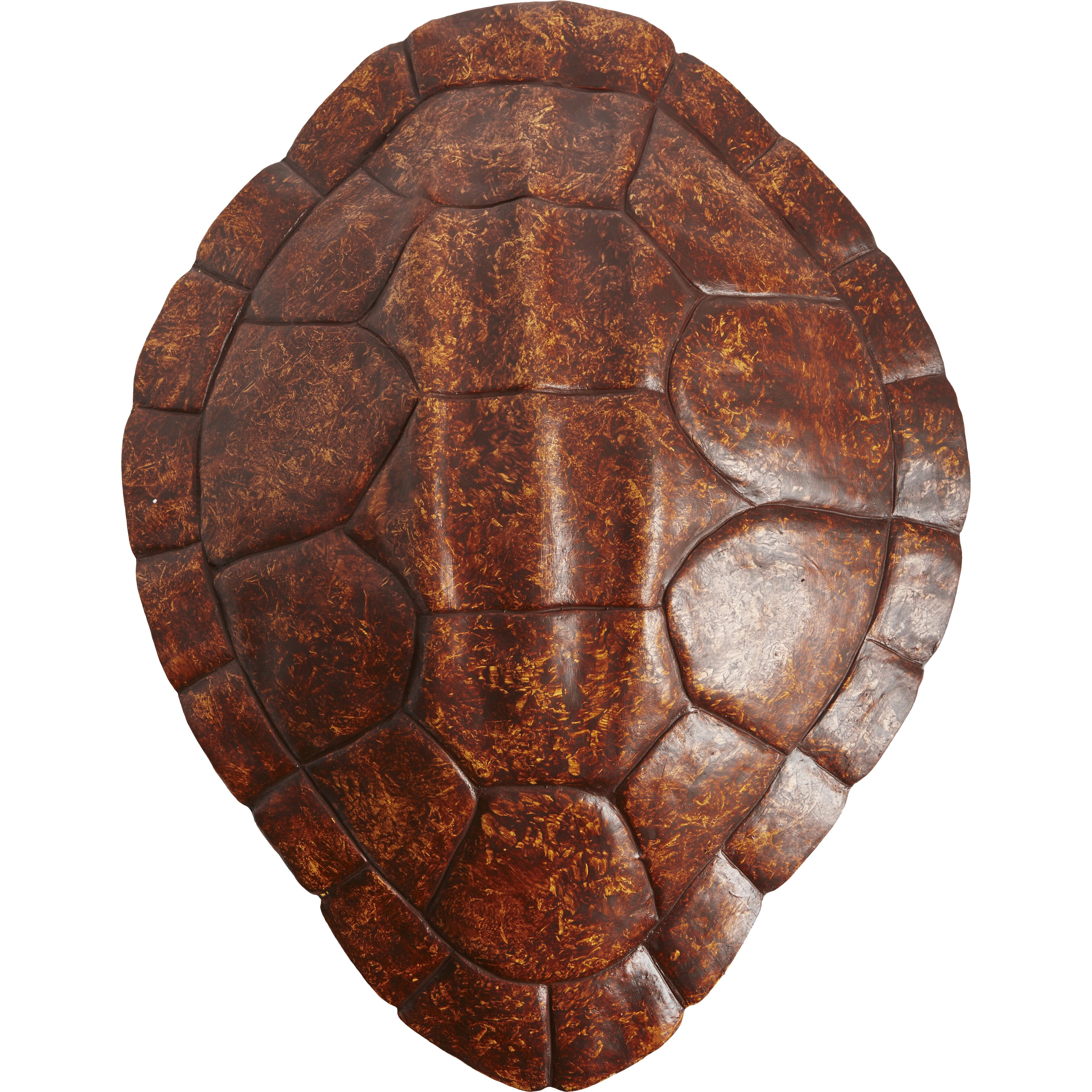 SPI Home Turtle Shell Wall Decor & Reviews