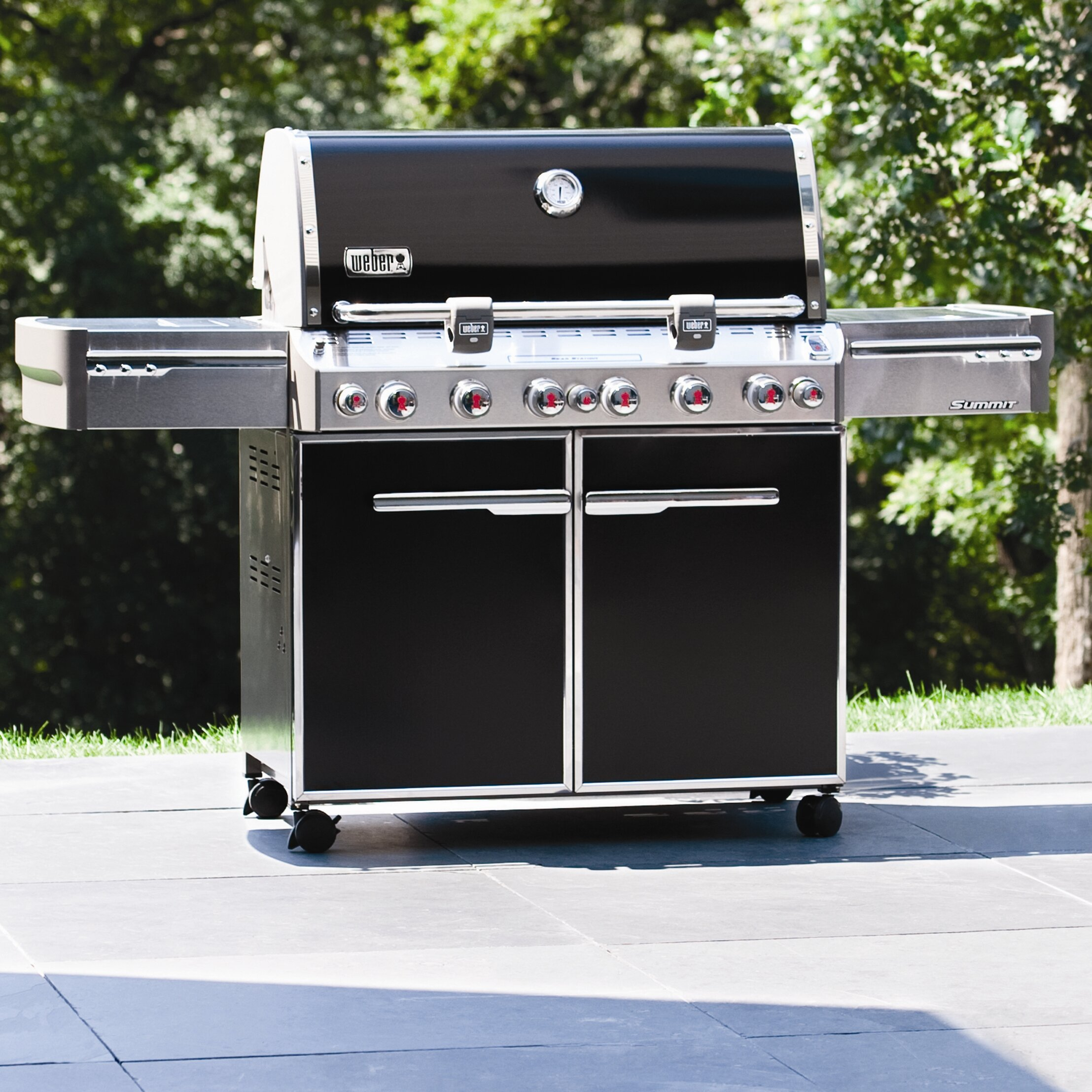 weber summit e 670 gas grill propane gas grills at html. Black Bedroom Furniture Sets. Home Design Ideas