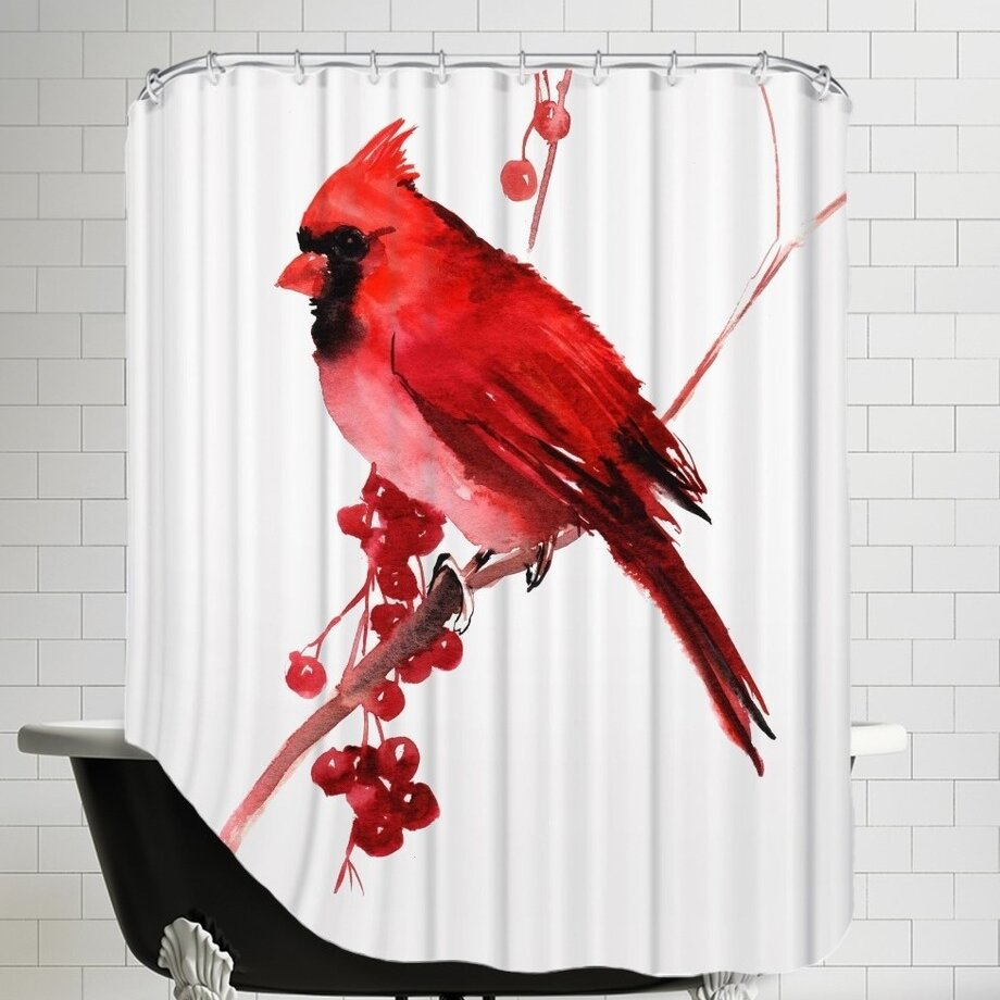 Cardinal Bird Shower Curtain | Wayfair