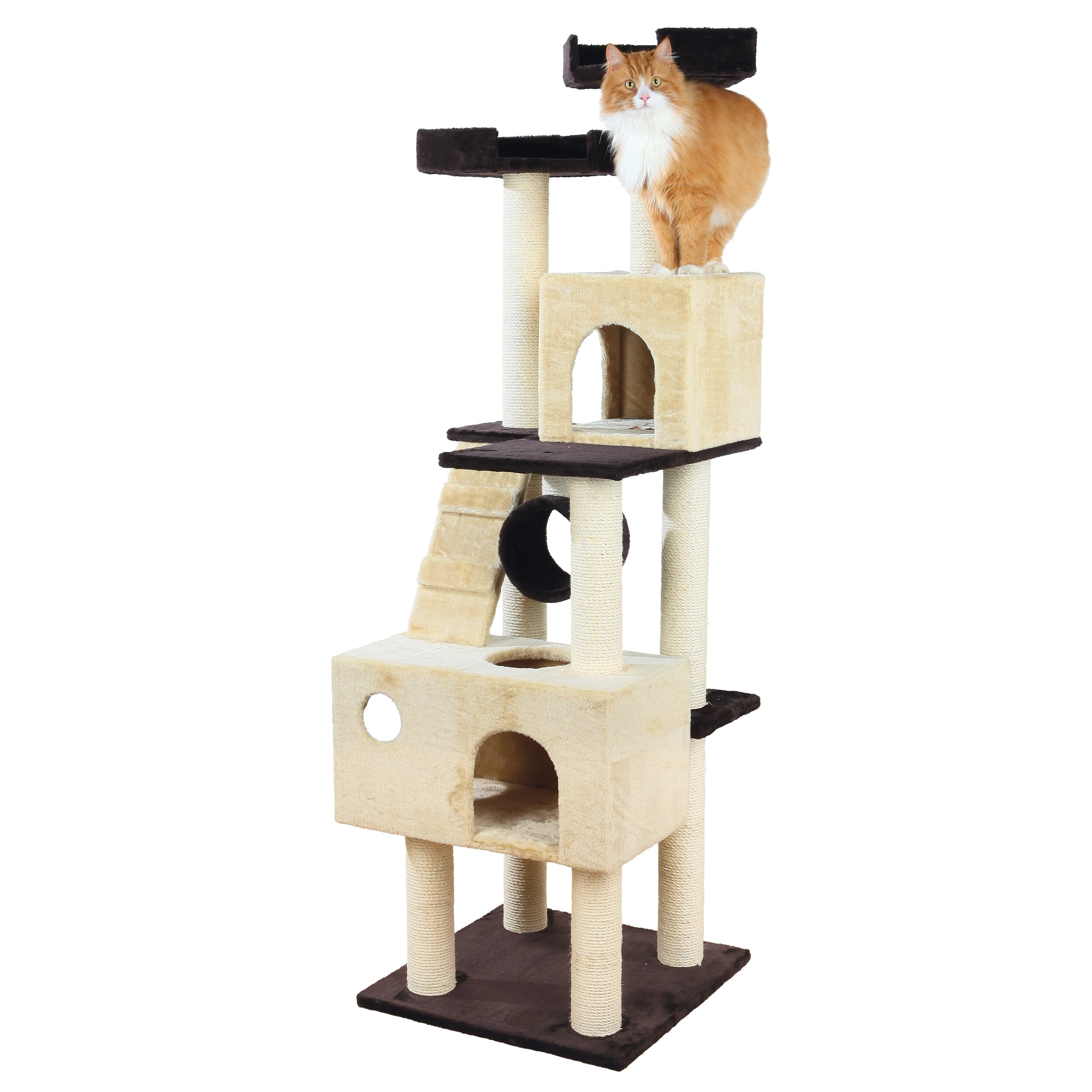 69 quot mariela cat condo wayfair