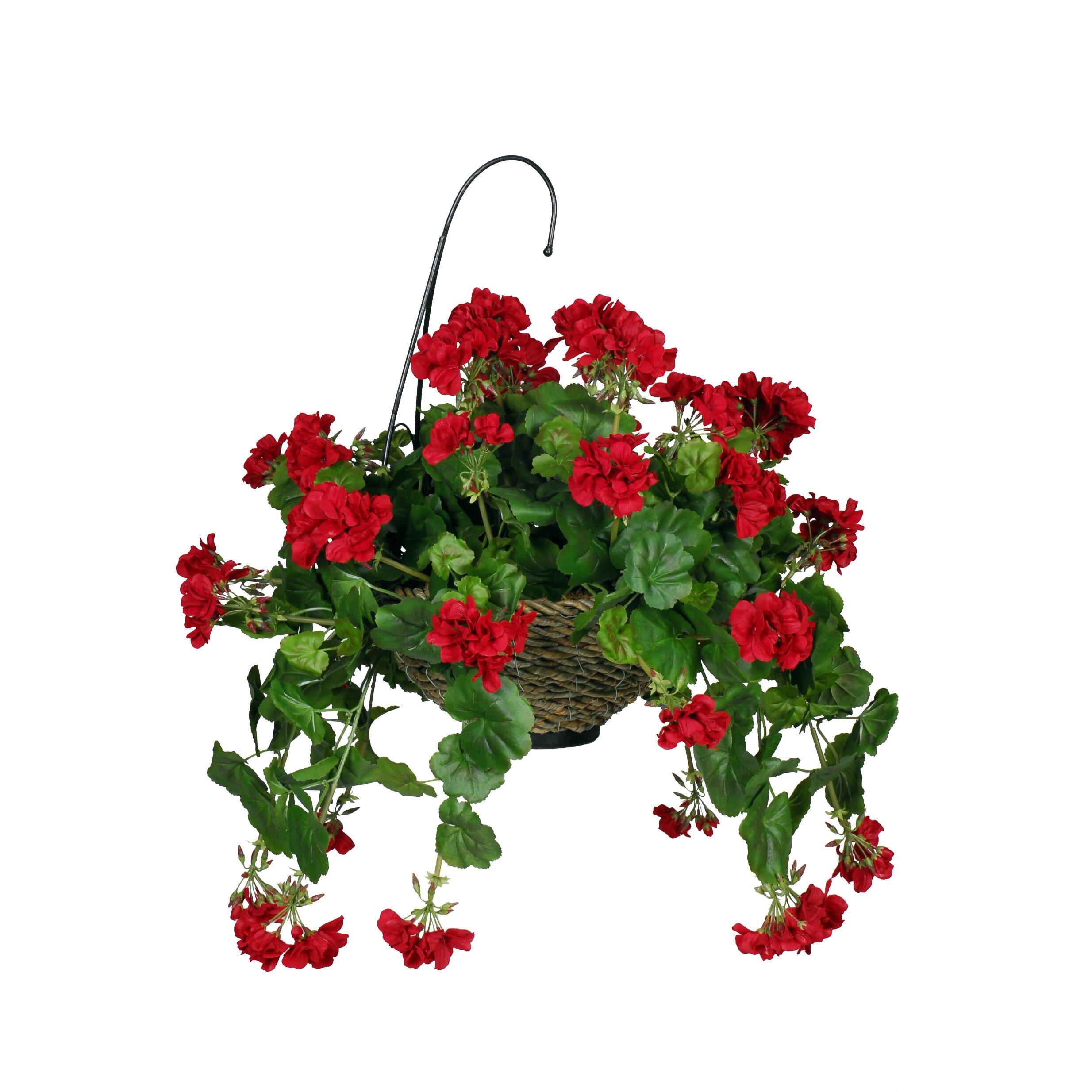 house of silk flowers artificial geranium hanging plant in basket reviews wayfair. Black Bedroom Furniture Sets. Home Design Ideas