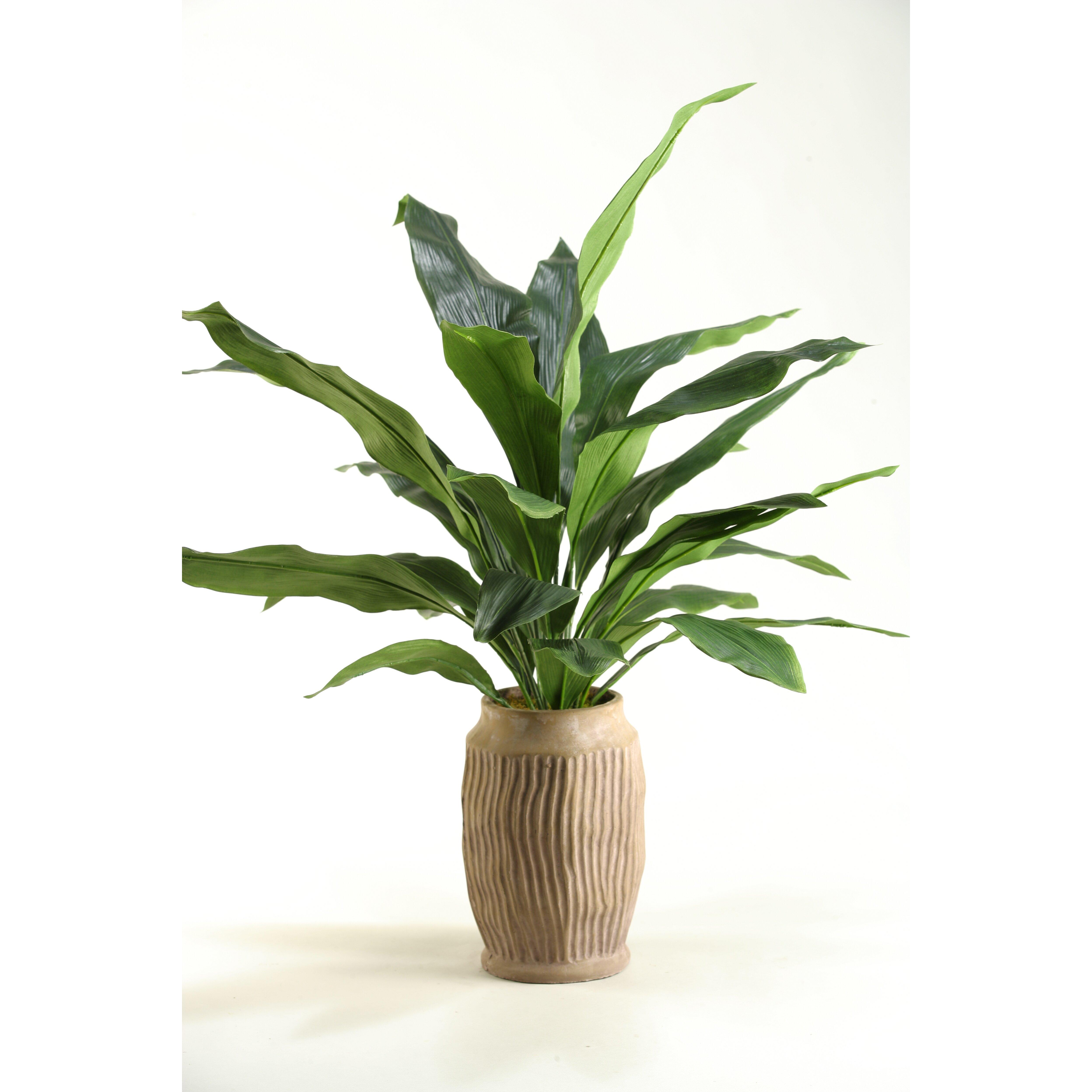 Cast Iron Desk Top Plant in Vase