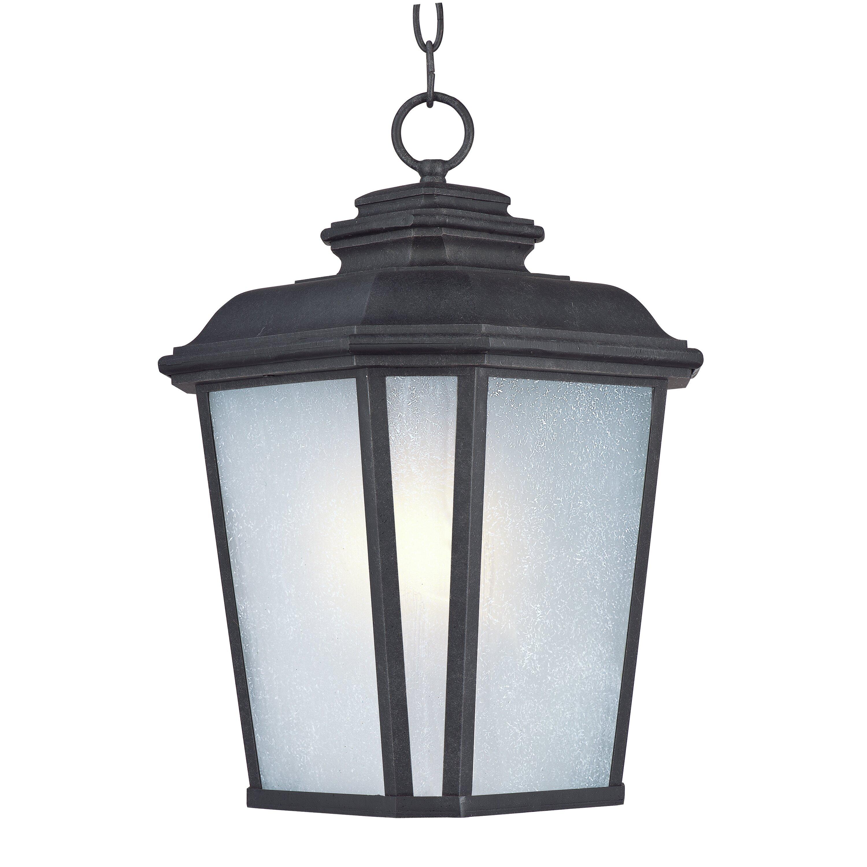 Wilton 1 Light Outdoor Hanging Lantern