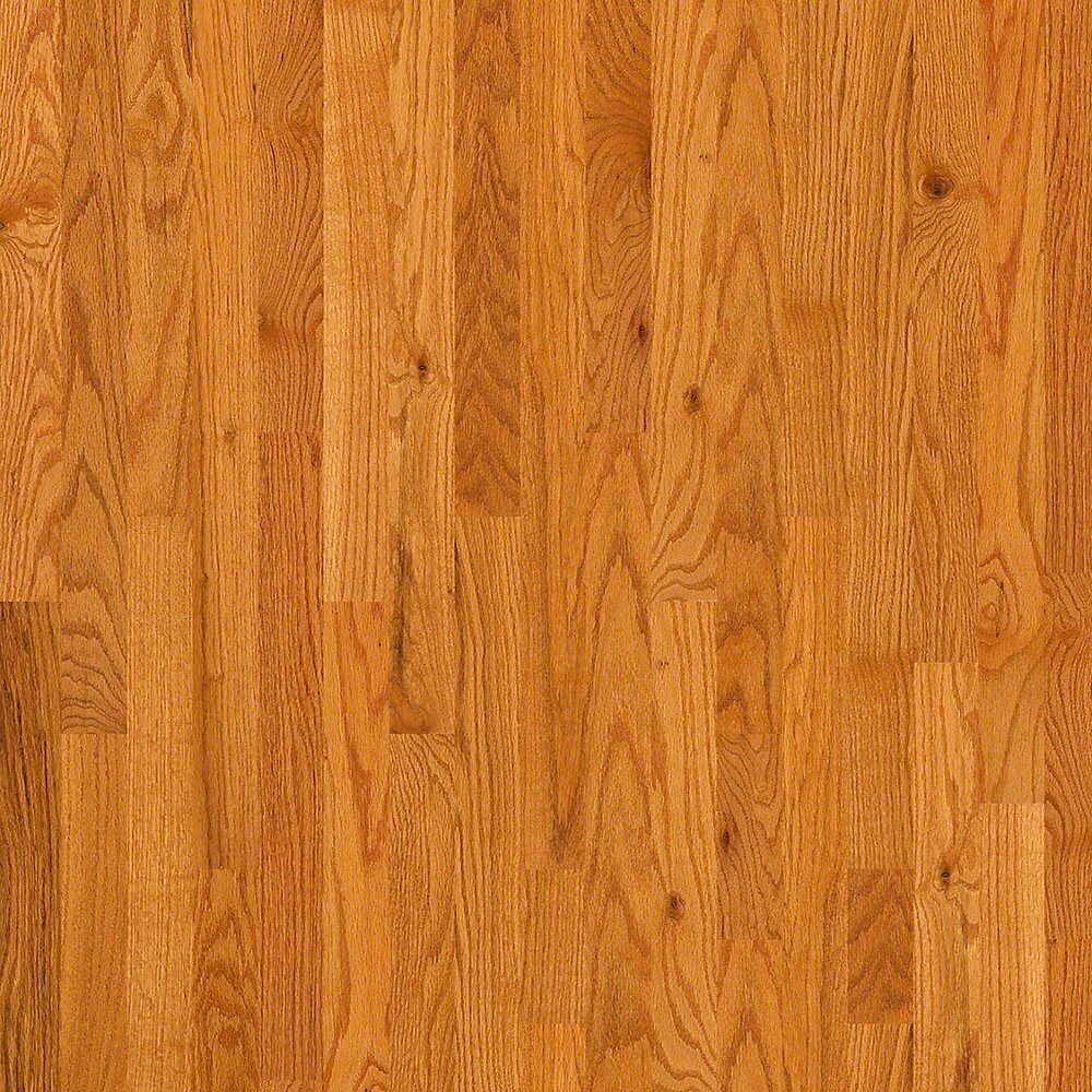 3 1 4 solid oak hardwood flooring in caramel wayfair for Oak wood flooring