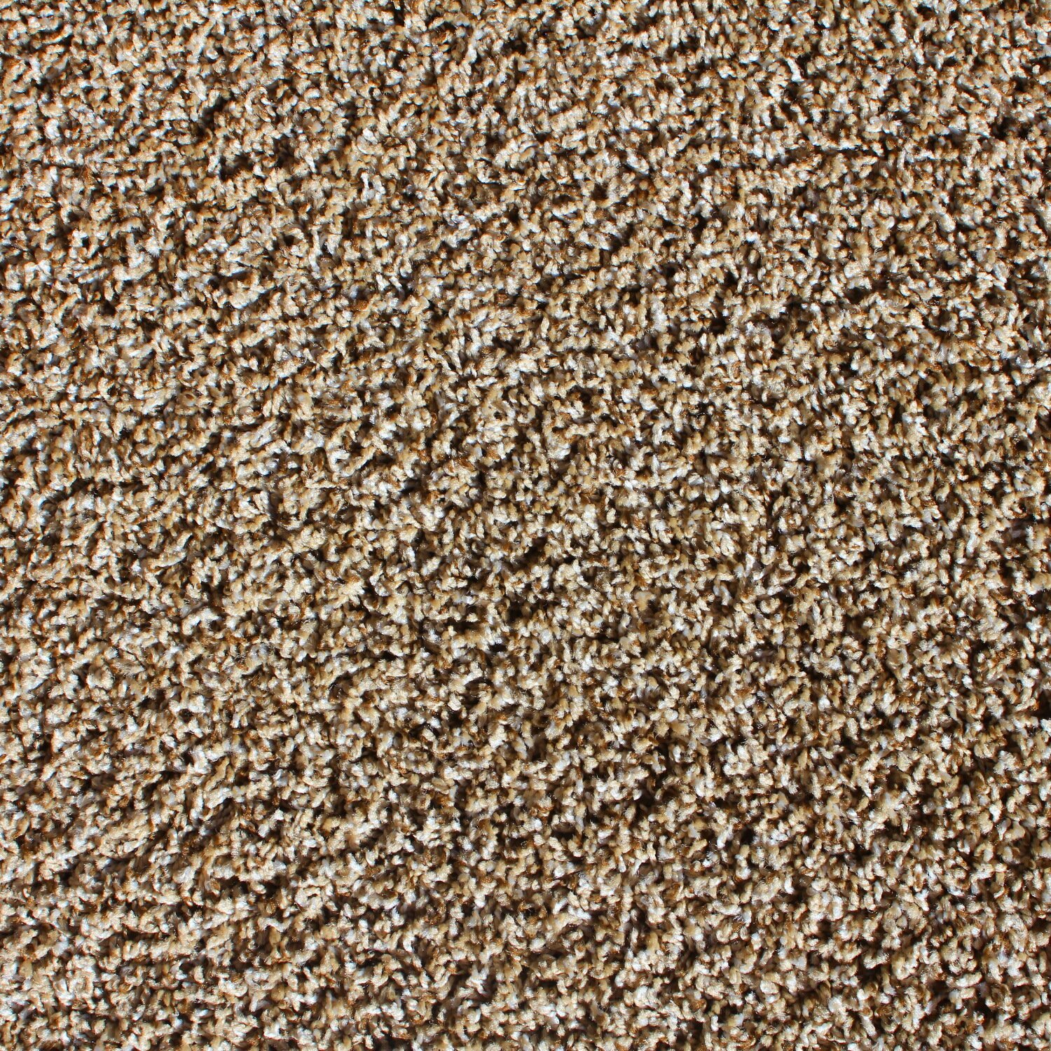 """Berkshire Flooring Tranquility 24"""" x 24"""" Carpet Tile in Toffee ..."""