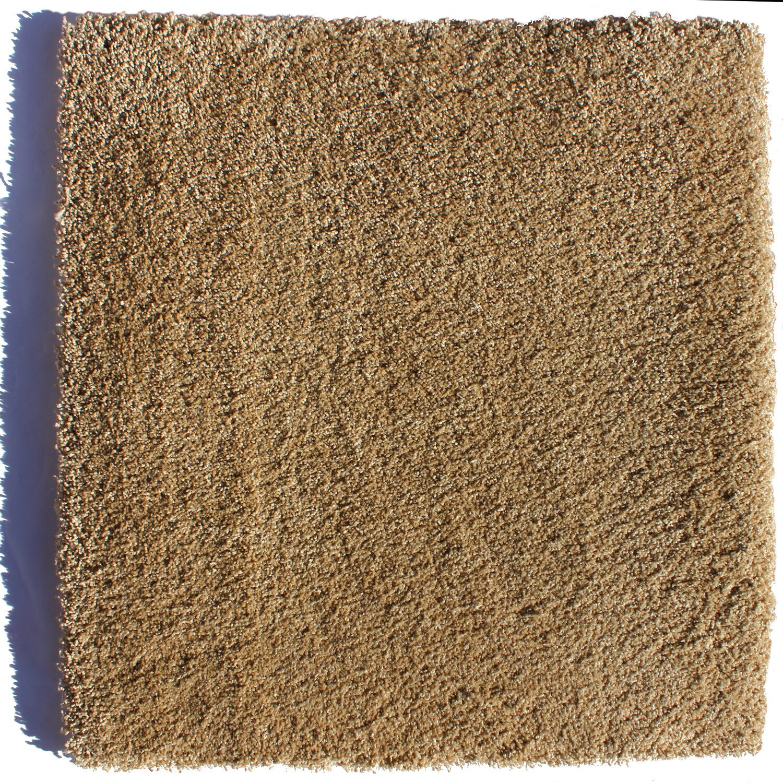 Average Lifespan Of Carpet Floor Matttroy